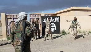 relawan irak al-hashd