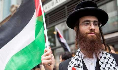 yahudi pro-palestina